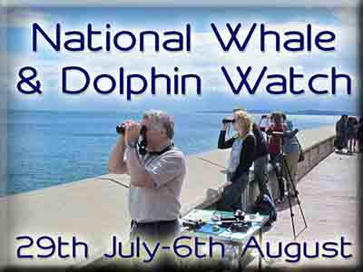 National-whale-and-dolphin-watch-2017-copy